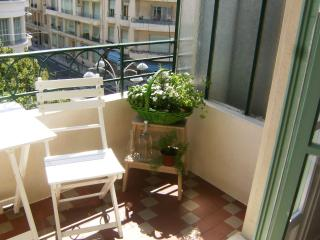 Amaryllis - Nice vacation rentals
