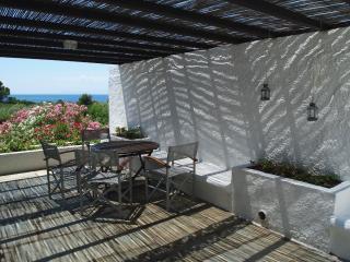 Beachfront 3-bedroom Villas at Vromolimnos Beach - Vromolimnos vacation rentals