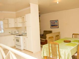 Spacious Condo with A/C and Toaster - Caroni vacation rentals
