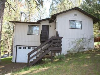 Great home- near marina, fireplace, a/c, satellite, full kitchen - Groveland vacation rentals