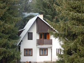 Spacious 4 bedroom Tatranska Strba Chalet with Television - Tatranska Strba vacation rentals