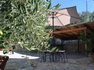Nice Cottage with Deck and Internet Access - Serre di Rapolano vacation rentals