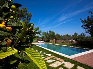 Villa Athermigo - Gavalochori vacation rentals