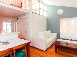 Amazing Loft Located in Cihangir - Istanbul vacation rentals