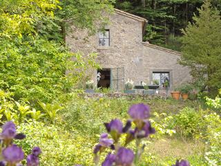 1 bedroom Cottage with Washing Machine in Montalcino - Montalcino vacation rentals