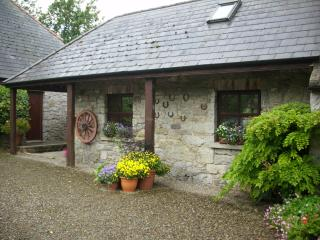 Comfortable 1 bedroom Cottage in Limerick with Internet Access - Limerick vacation rentals