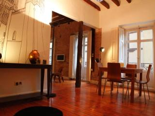 Toledo Old City Amazing Flat - Toledo vacation rentals