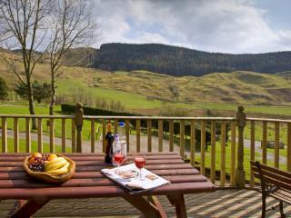 Beech Lodge 1 - Oban vacation rentals