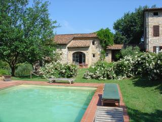Cottage in the Tuscany hills with pool - San Martino in Freddana vacation rentals