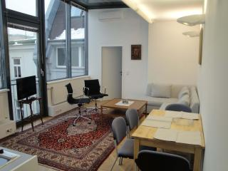 Living Vienna / Atelier - Vienna vacation rentals