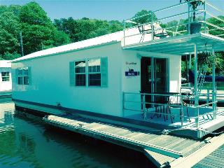 Most Unique Rental! Spacious and Modern Gemini Houseboat. - Bourne vacation rentals