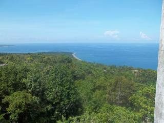 PEACE AND TRANQUILITY IN PORTLAND - Port Antonio vacation rentals