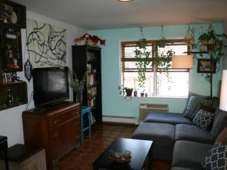 Cozy Apt in Williamsburg Alll To Yourself! - Brooklyn vacation rentals