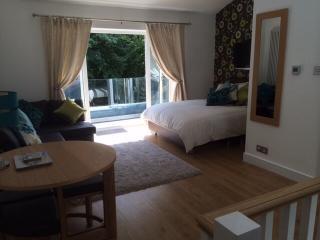 River Valley Studio - Saint Austell vacation rentals
