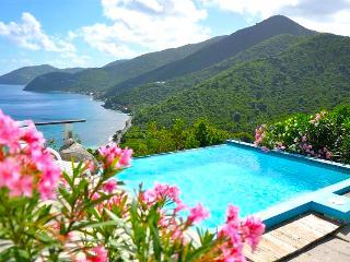 Tortola Adventure! Private 3BR Villa with Open View Pool - Tortola vacation rentals