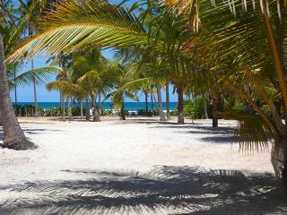 Casa Tropical - Praia do Forte vacation rentals