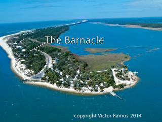 The Barnacle Beach House - Port Saint Joe vacation rentals