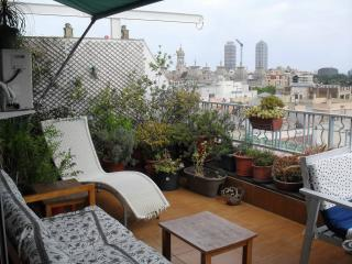 Attic with terrace and spectacular views over the city - Barcelona vacation rentals
