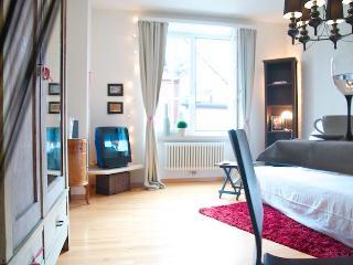 Very beautiful in zurich old t - Zurich vacation rentals