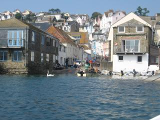 Nice Cottage with Internet Access and Short Breaks Allowed - Salcombe vacation rentals