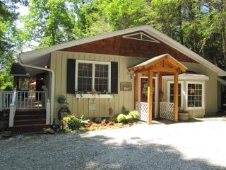 Lazy Bear Lodge - Scaly Mountain vacation rentals