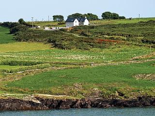 Wonderful 4 bedroom Cottage in Courtmacsherry - Courtmacsherry vacation rentals