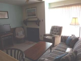 Perfect 1 bedroom Condo in Angel Fire - Angel Fire vacation rentals