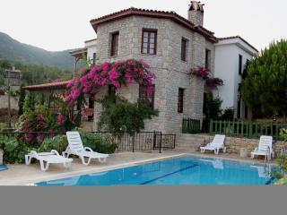 Charming 3 bedroom Mesudiye Villa with A/C - Mesudiye vacation rentals