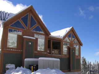 1 bedroom House with Internet Access in Big White - Big White vacation rentals