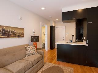 South End Boston Furnished Apartment Rental - 784 Tremont Street Unit 6 - Boston vacation rentals