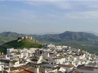 Beautiful Townhouse In The Centre Of Alora,   WiFi - Alora vacation rentals
