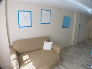 Centrally Located Cozy Studio - Istanbul vacation rentals