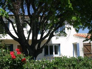 Sunny 4 bedroom Gite in Cascastel-des-Corbieres with Internet Access - Cascastel-des-Corbieres vacation rentals