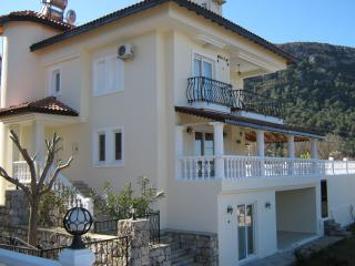 Spacious Villa with A/C and Television - Yesiluzumlu vacation rentals