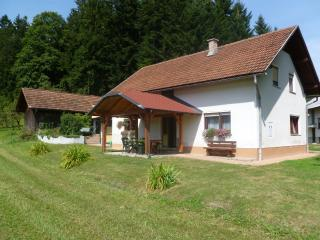 Beautiful Villa with Satellite Or Cable TV and Television - Gornji Grad vacation rentals