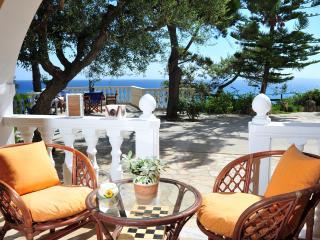 Nice 1 bedroom Condo in Tsilivi - Tsilivi vacation rentals