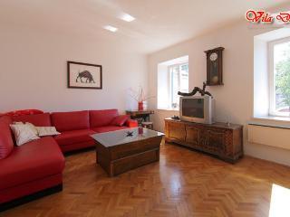 Vila Dane - enjoy Karst lively - Sezana vacation rentals