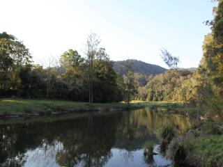 Cumquat Cabin - Bellingen vacation rentals