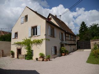 Nice House with Satellite Or Cable TV and Outdoor Dining Area - Mittelbergheim vacation rentals