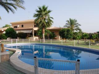 Luxury Villa In Valenciana - Valencia - Spain - Picassent vacation rentals