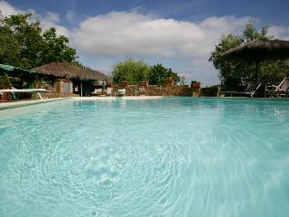 Quintessential Tuscan farmhouse in Gavorrano region, private garden, private pool, jacuzzi - Gavorrano vacation rentals