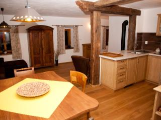 1 bedroom Apartment with Internet Access in Cesky Krumlov - Cesky Krumlov vacation rentals