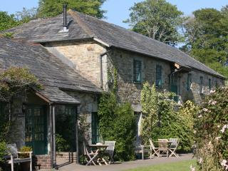 Glynn Barton Cottages Hayloft - Bodmin vacation rentals