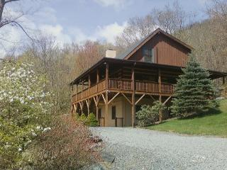 Fins n Feathers a authentic log cabin located in Seven Devils, sleeps 10 - Linville vacation rentals