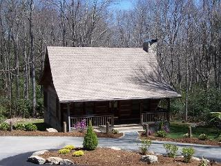 Mountain Brook Log Cabin a perfect cabin in the woods, close to the Parkway - Blowing Rock vacation rentals