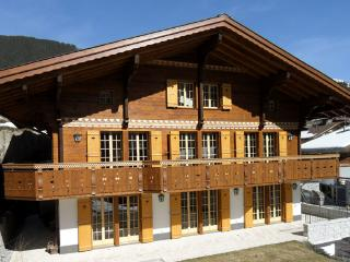Nice Chalet with Internet Access and Satellite Or Cable TV - Grindelwald vacation rentals