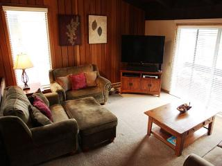 Large 4 bedroom 2 bath condominium walking distance to Canyon Lodge. - Mammoth Lakes vacation rentals