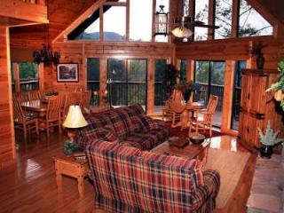 LUXURY CABIN SPECTACULAR MT. VIEW & PRIVACY 5 BR - Sevierville vacation rentals