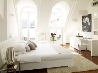 APARTMENT IN THE CENTER OF VIENNA! - Vienna vacation rentals