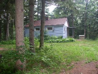 Nice 2 bedroom Cabin in Friendship - Friendship vacation rentals